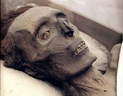 Mummies Capuchins